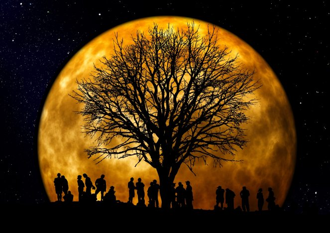community-dark-full-moon-22138