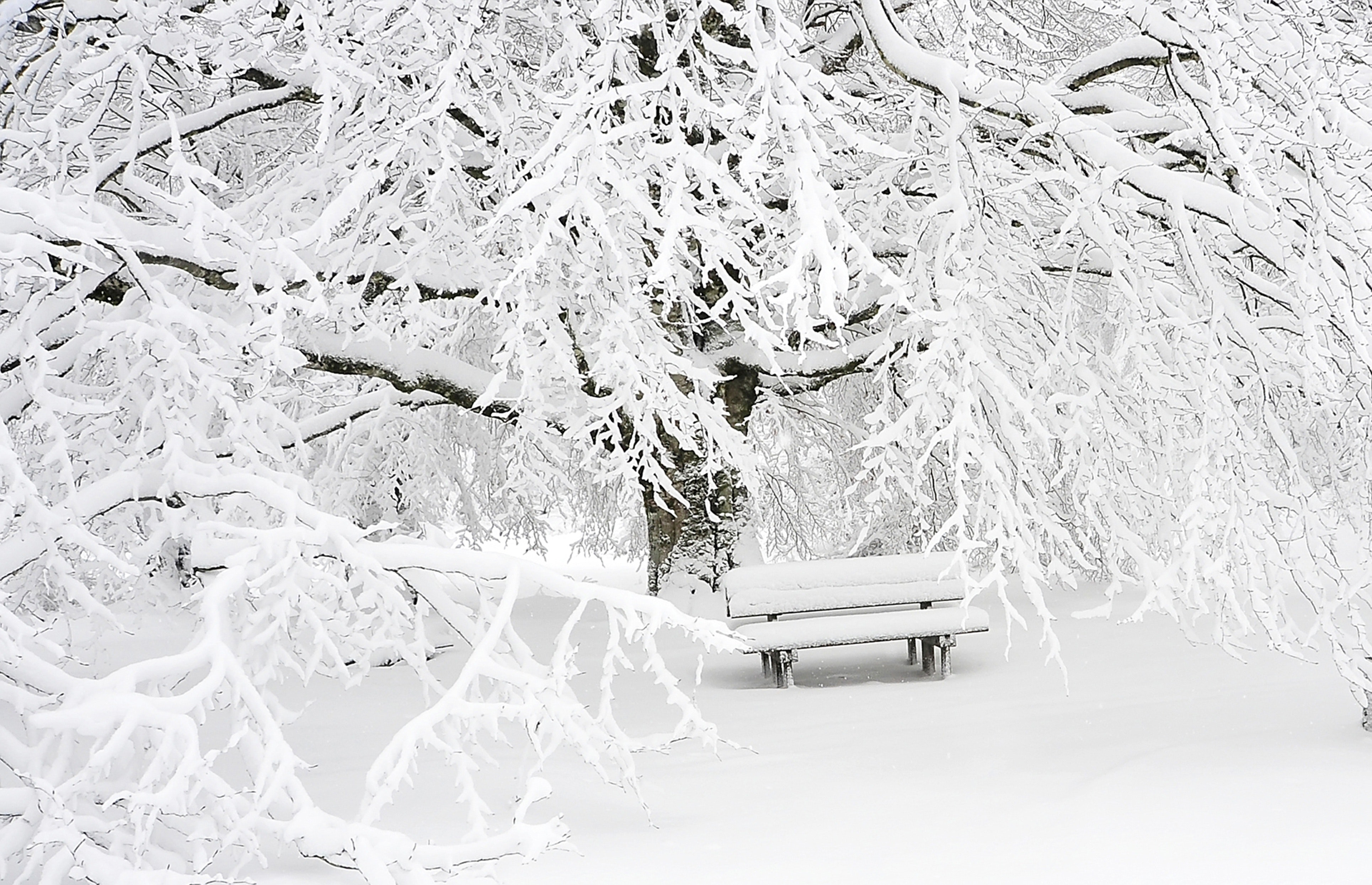 bench-cold-empty-209839